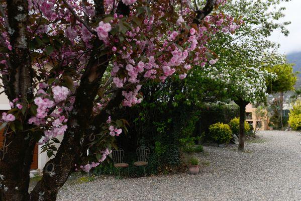 SIT-Hotel-Gare-Pierrefitte-Hautes-Pyrenees (16)