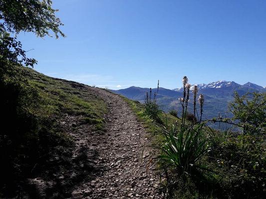 SIT-Solieil-Pibeste-camp (22)