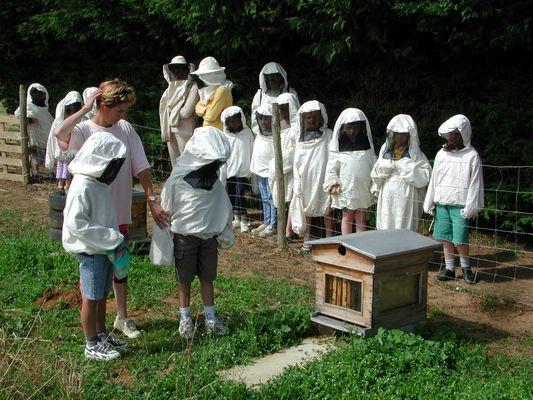 DEG53-la-ferme-des-abeilles-3
