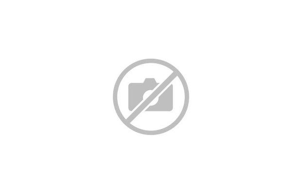 Vue aerienne piscine et jardin GPoupa