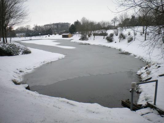 plan-d-eau-saint-mars-sur-la-futaie-53-loi-1