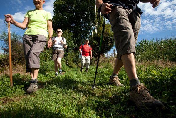 randonnee-pedestre-ambrieres-les-vallees-53-iti-3