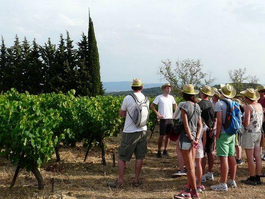 2016-Balades-Vigneronnes-Domaine-Fontanilles-haut-Maure-Minervois--2-