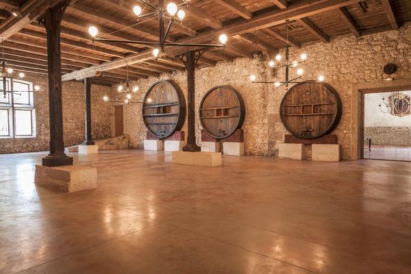 Chateau Pech Celeyran-Salles d'Aude_12