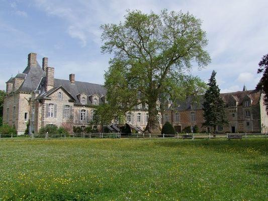 Platane Orient . Château Le Kinnor