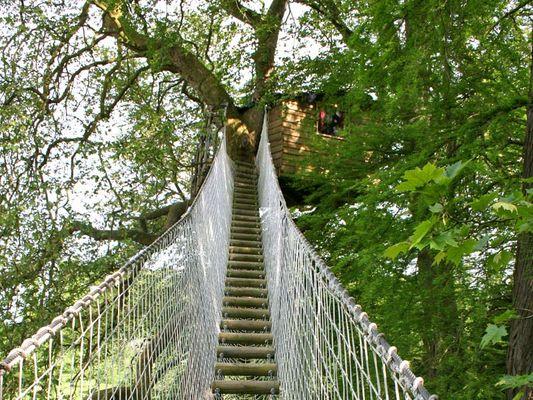 Domaine de Canon - pont de singe