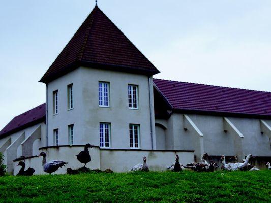 Domaine des Essarts Bâtiment