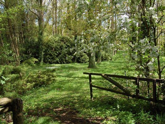 Le Moulin du Saut de la Truite Gite de Thierry Lelong à Hermival-les-Vaux 12 Synphonie de verdure