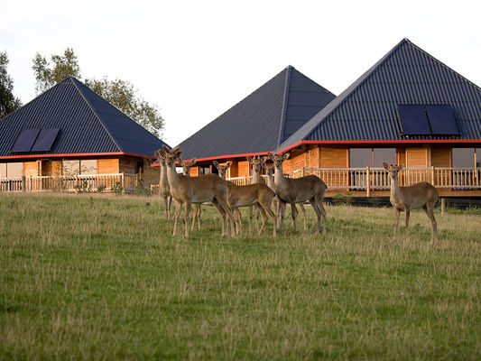 Cerza Safari Lodge - Hermival les Vaux