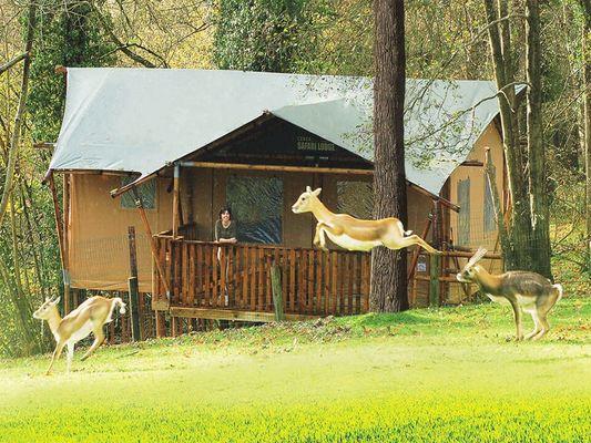 Tente-safari-Cerza