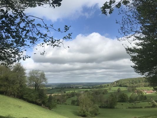 panorama-sur-loudon-L-Oudon2