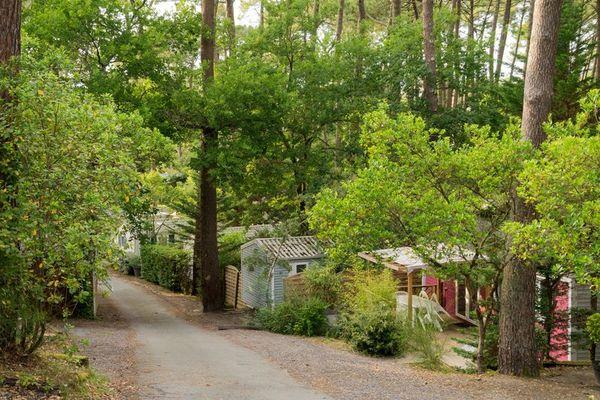 Camping-Arcachon-2019--3-