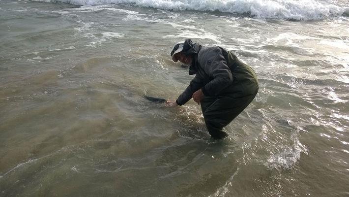 Pêche-sportive-du-bar-à-la-pointe-du-Raz-4