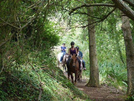 centre-equestre-triskel-Plozevet-Pays-Bigouden-2