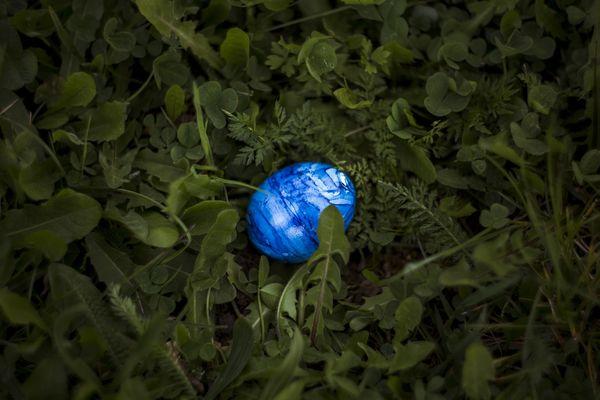 easter-eggs-photo-1535364148377-a8f686fdb7dd