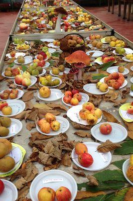 Exposition sur les pommes