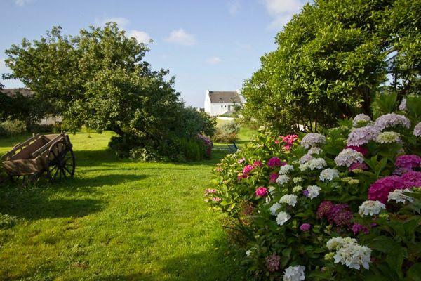 jardin été 2012