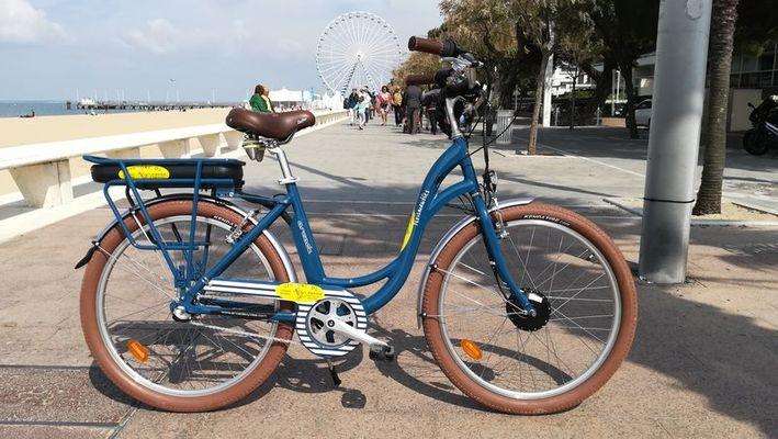 Dingo Vélos (3)
