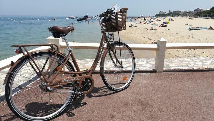 Dingo Vélos (7)