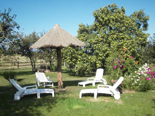 Gîte Les Balcons de la Baie (jardin)
