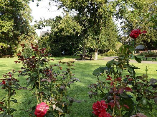 Parc municipal Montfort-sur meu