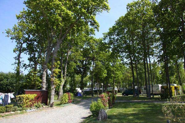 Camping le Bois Pastel