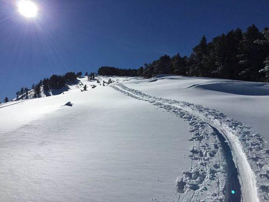 rando ski