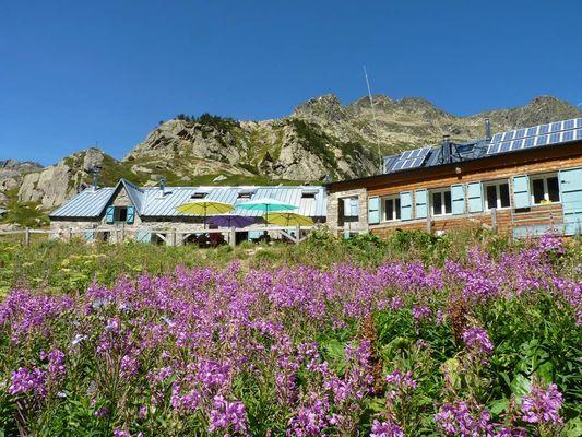 Terrasse et fleurs - Refuge d'en Beys