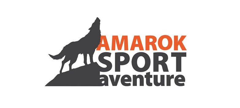 logo Amarok