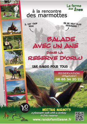 balade dans la réserve d'orlu avec un âne