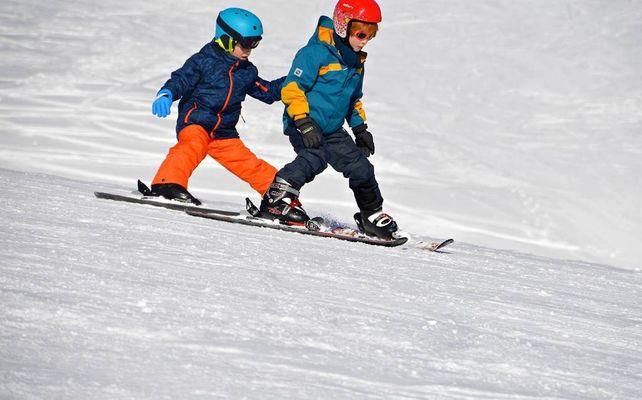 Beille alpin