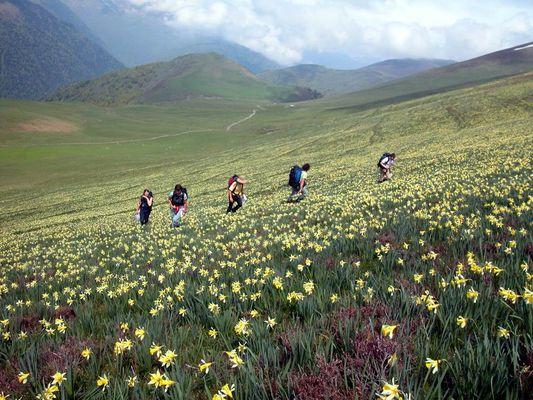 Randonnée Bureau des Guides Panorama