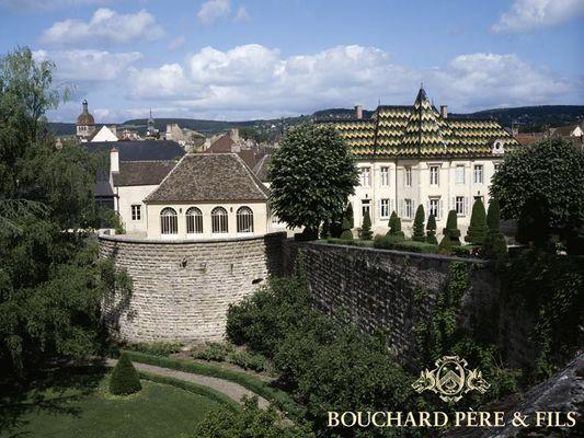 Le site du Château de Beaune