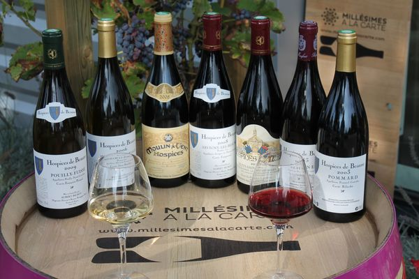 Dégustation vins des Hospices