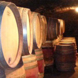 Visitez la cave du Domaine Chapelle à Santenay
