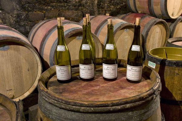 Domaine Dufouleur Vins