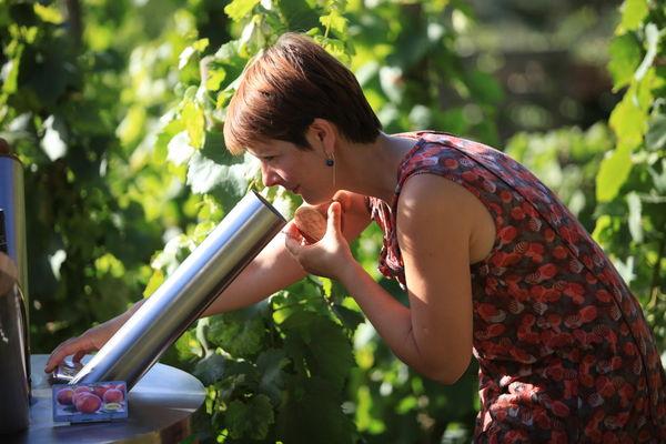 Le Parcours Olfactif par l''Atelier de la Vigne et du Vin
