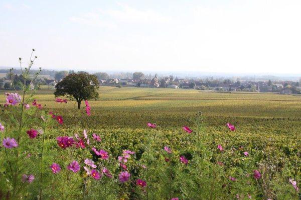 Un village en Bourgogne