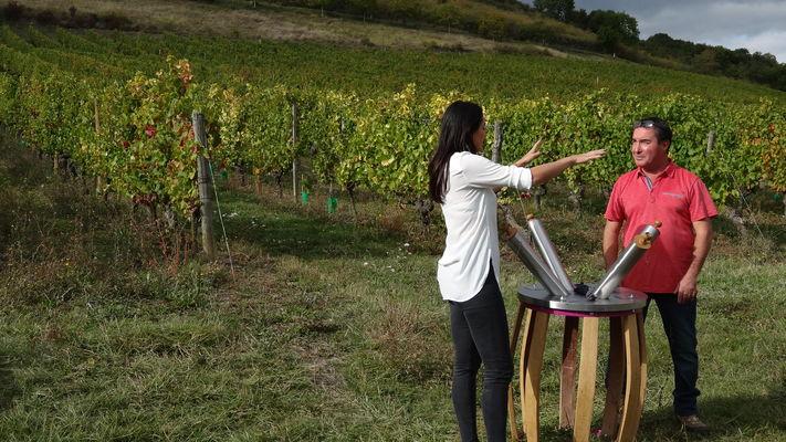 Le Parour Olfactif de l''Atelier de la Vigne et du Vin à Orches, Hautes Côtes de Beaune