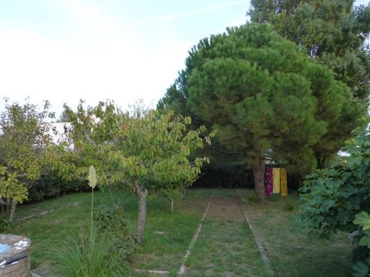 jardin-option-site-2014-2481