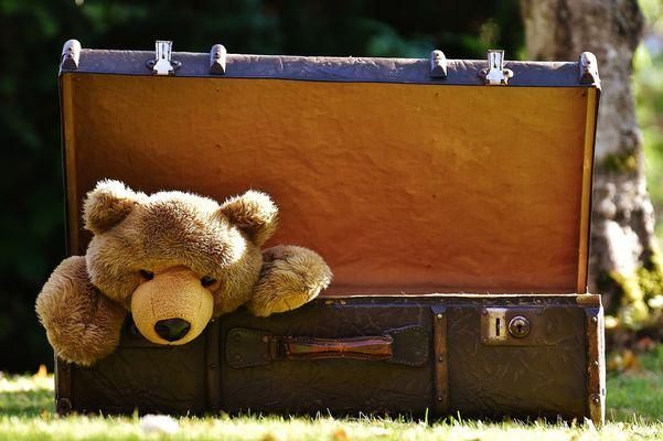 luggage-1650171-960-720-131880