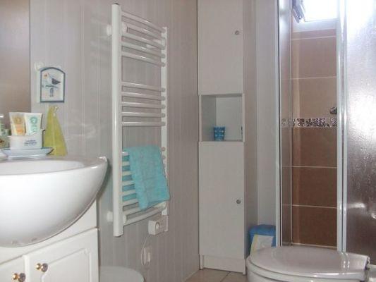 passiflores-salle-d-eau-52893