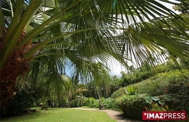 Jardin D Eden Park Garden Saint Paul Reunion Island