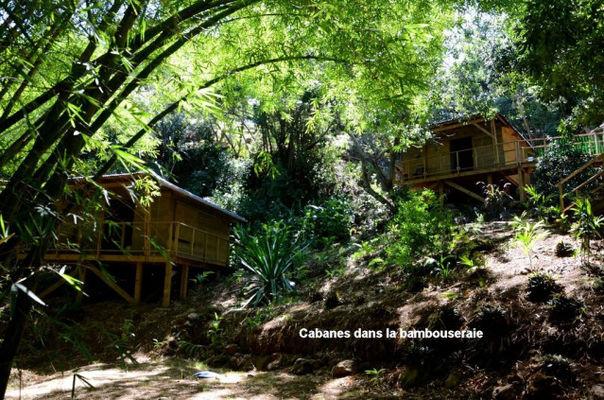 Cabanes sur une Ile (Des)