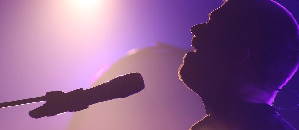 Chanteur. CP akd835.jpg