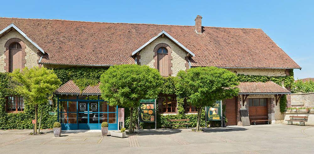 Champagne chassenay d 39 arce ville sur arce site - Office du tourisme champagne ardennes ...
