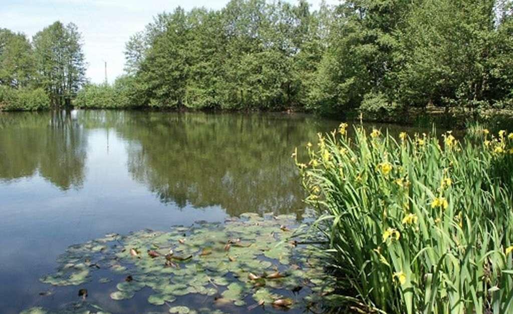 La maison du lac rocroi site officiel du tourisme en - Office du tourisme champagne ardennes ...