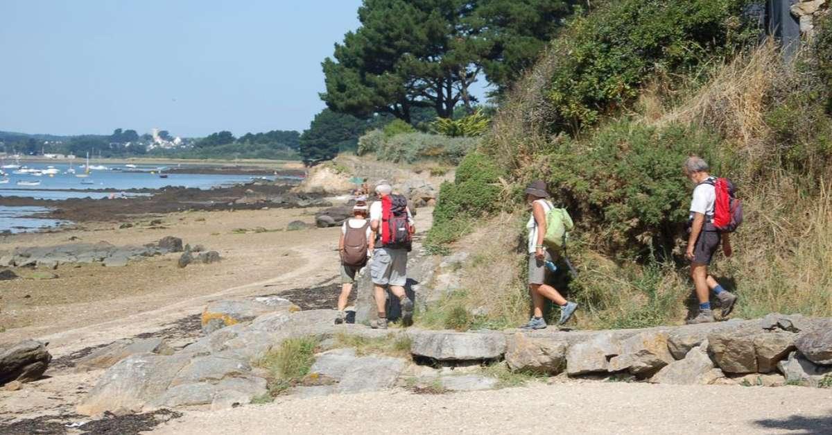 Sentier Des Culs Salés Séné Séné Tourisme Bretagne