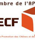 APECF.jpg