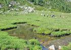 PR 4  La vallée du Carol.jpg